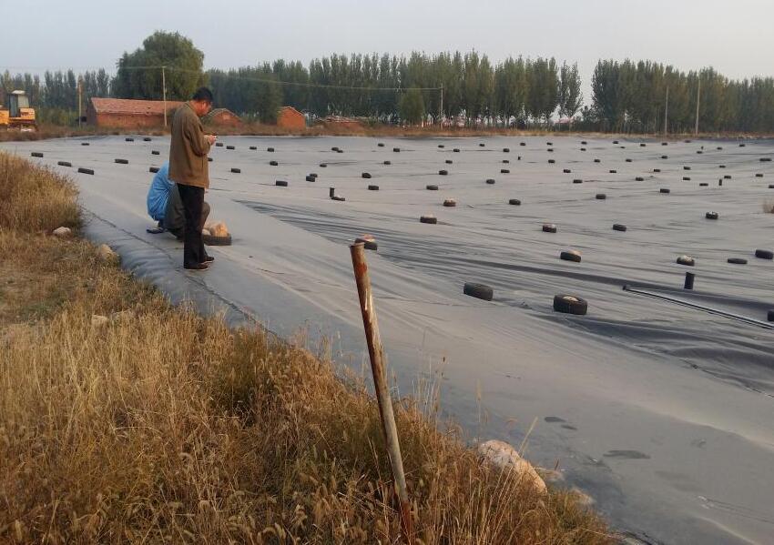 尾矿库中排渗体系的土工布应用先容