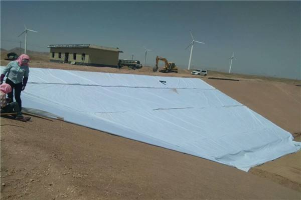 大型水库基面处理土工膜铺设工艺流程