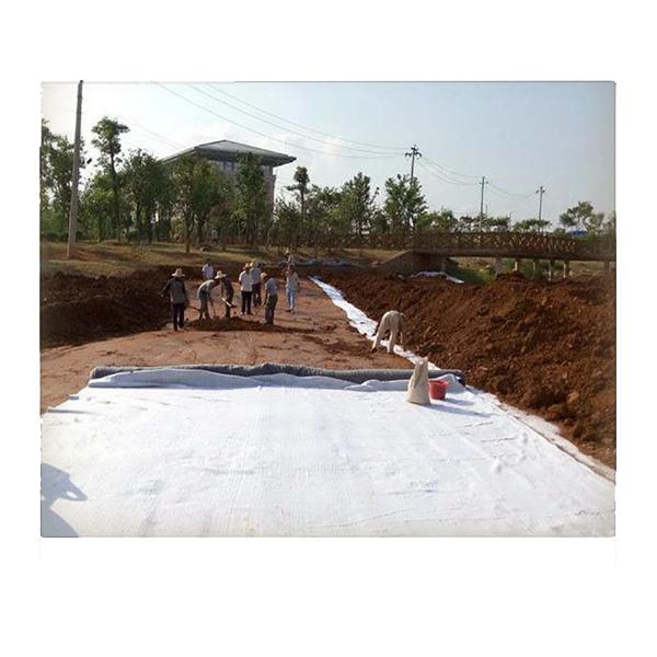 养殖高盐蓄水防渗项目使用膨润土防水毯多钱钱一平米?