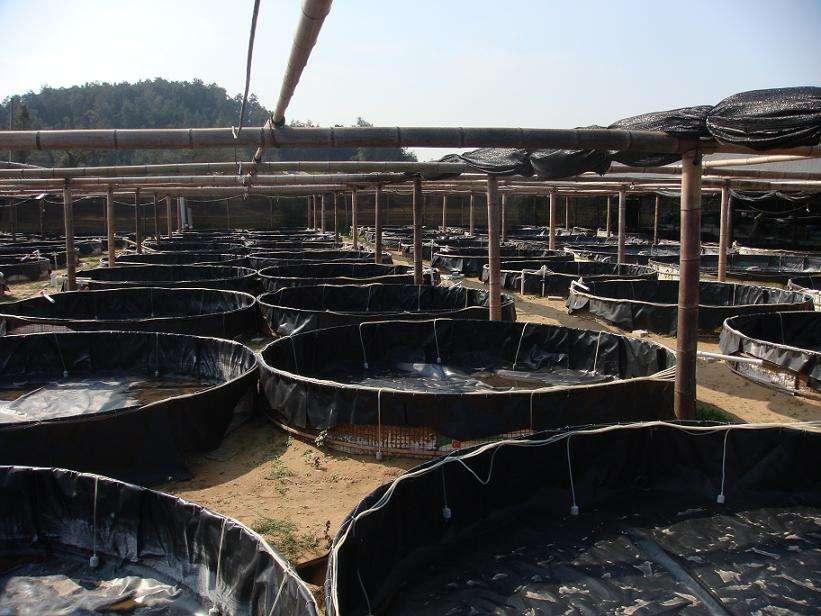 请参考石油储罐基础设施土工膜施工方法